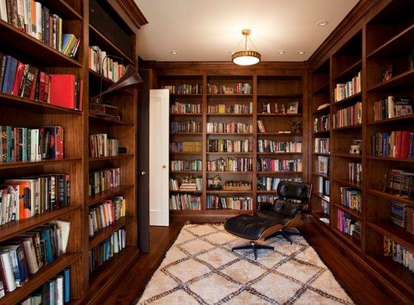 biblioteca 29