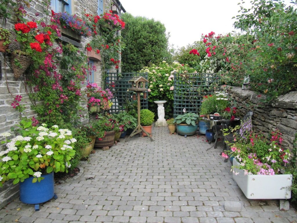 gradina pavata si flori